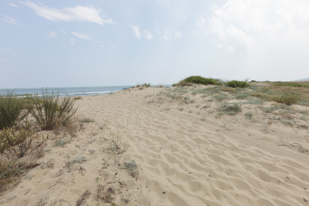 beach2-1