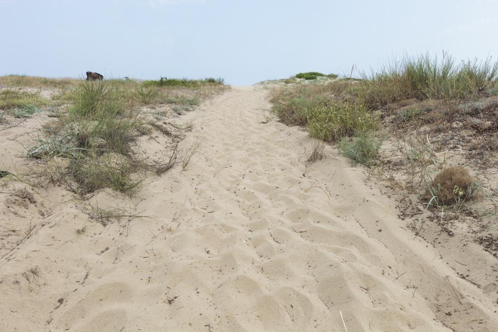 beach4-1
