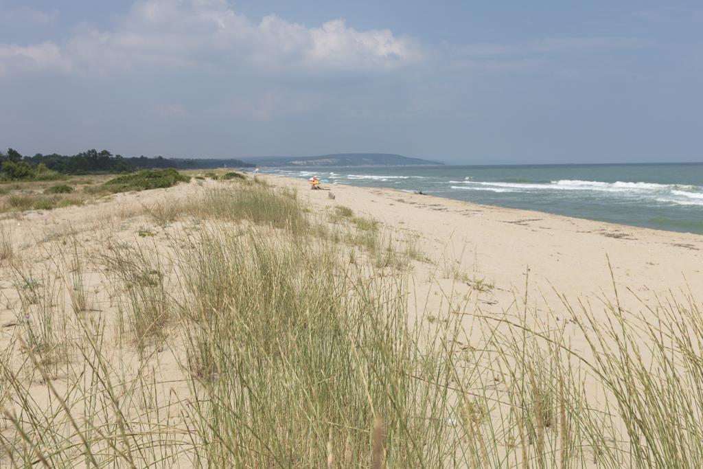 beach7-1