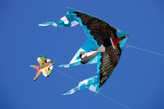 Kite fest_Pavel Gospodinov