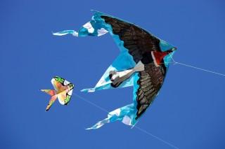 Kite fest_Pavel Gospodinov