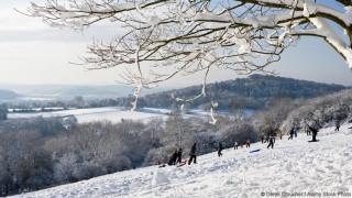 BHER34 People sledging at Newlands Corner near Guildford, Surrey, UK.