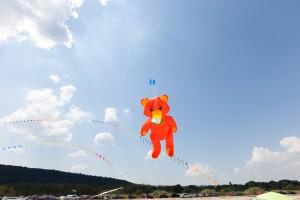 kite_festival-112