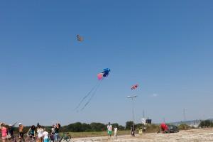 kite_festival-122