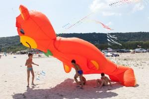 kite_festival-128