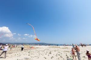kite_festival-133