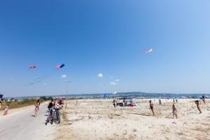 kite_festival-80